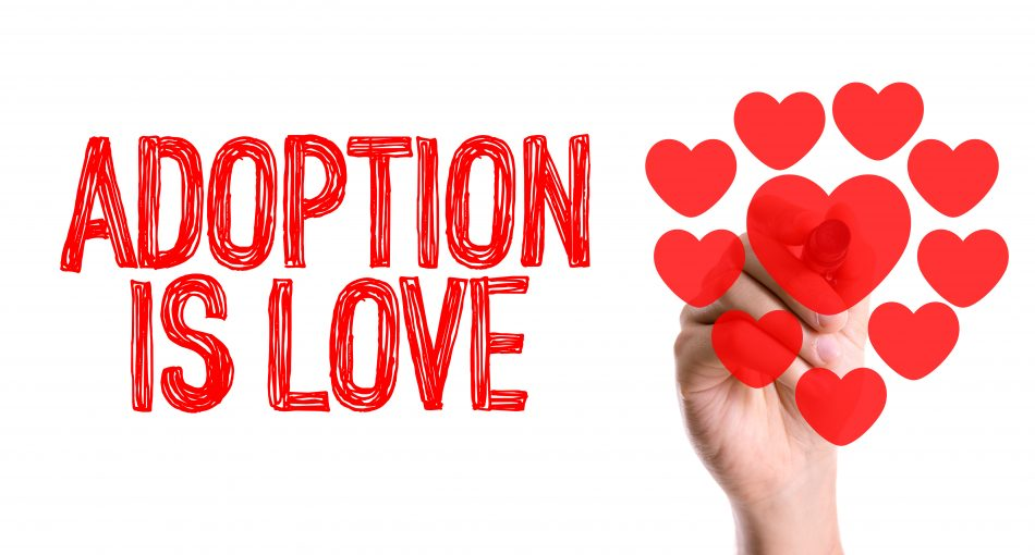 Arizona licensed adoption agency