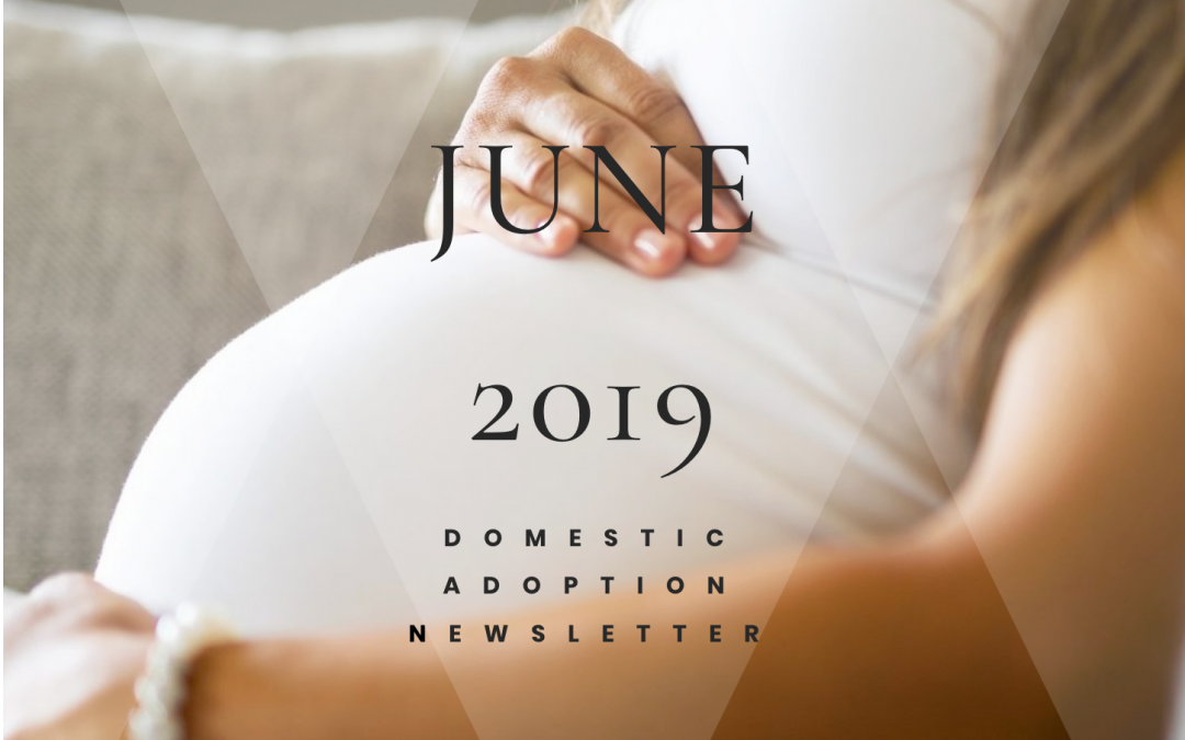 The Building Arizona Families Domestic Adoption June 2019 Newsletter
