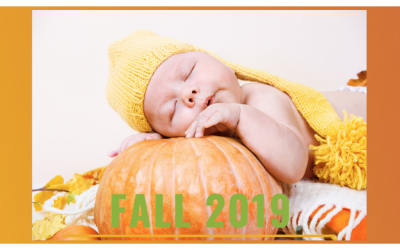 Building Arizona Families Domestic Adoption October 2019 Newsletter
