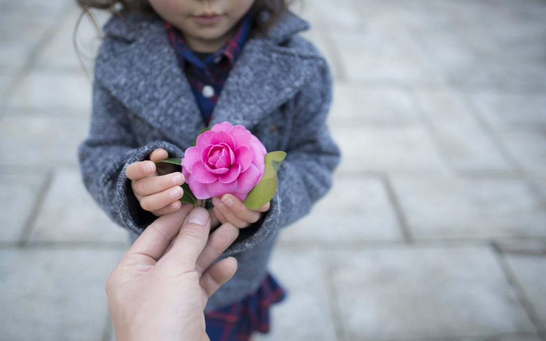 Protecting Foster Children with American Adoptions