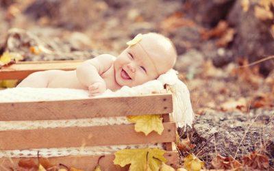 Building Arizona Families Domestic Adoption September Newsletter
